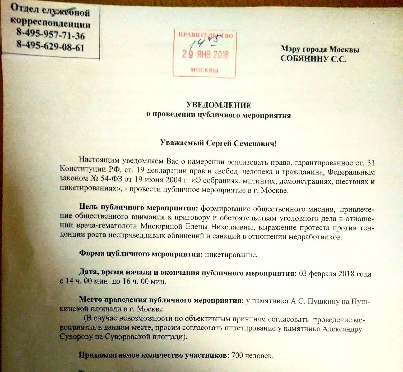 Уличная акция за освобождение Елены Мисюриной